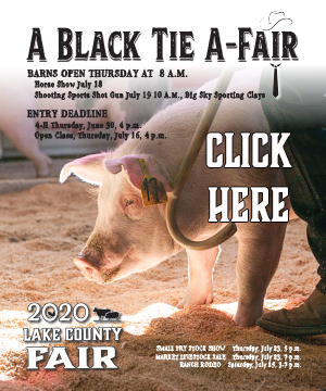 2020 Lake County Fair Book