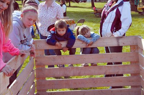 Xavier St. Clair and Milee Cordier hang on the fence waiting for the pig to do his business.
