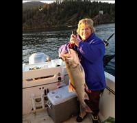 Anglers hook 2,201 lake trout in week 2