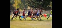 Hewston places 5th at State cross-country meet