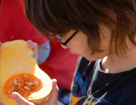 Ronan second grader Sean Burrafaco checks out the inside of a butternut squash.