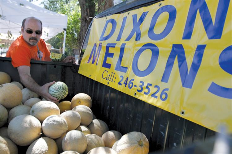 Greg Hettick, son of Dixon Melons owner Harley Hettick, searches for the perfect melon for a customer.