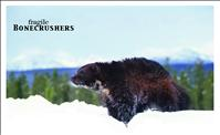 Proposed threatened species listing could affect wolverines