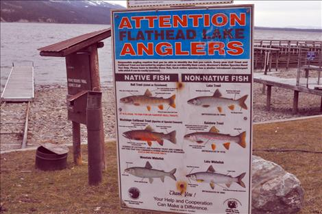 Know your fish: a sign at Blue Bay helps angler identify what a lake trout looks like.