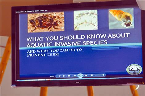 The Flathead Basin Commission previewed an educational, narrated video that will be available to the public in May.