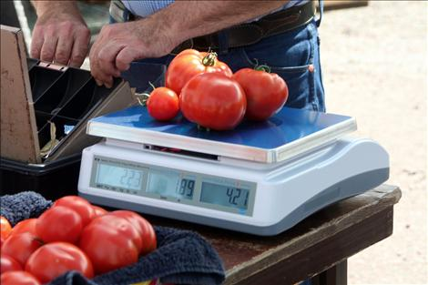 David Wolverton brought his early tomato yield to the market and went home early after selling out.