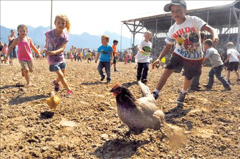 Scores of youngsters sprint toward frantic chickens during the Kiddie/City Slicker Rodeo on Saturday. If caught, the chicken went home with the child.