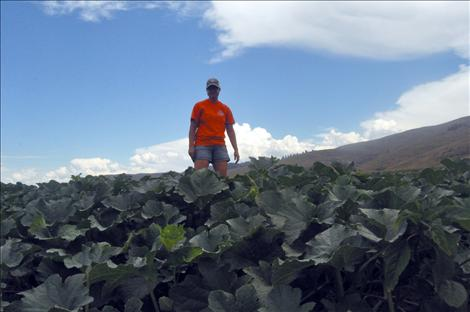 Cassie Silvernale, co-owner of Dixon Melons, Inc., stands among a field of melons.