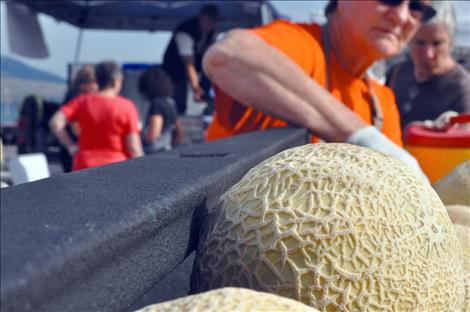 Joey Hettick, co-owner of Dixon Melons, Inc, slices samples of melon for customers to taste.