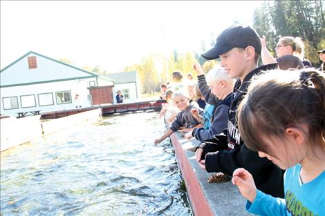 wenty five K-6 Valley View students help feed rainbow trout at the Jocko River Fish Hatchery during a field trip to the facility Oct. 10.