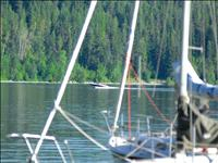 Flathead Lakers meet at Yellow Bay