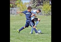 U12 boys dominate Force, Strikers