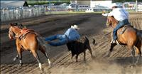 Mission Mountain Rodeo comes to Polson June 26, 27