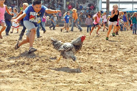 The ever-popular chicken scramble, part of the Kiddie Slicker rodeo, is sure to get the dust flying again this weekend as children chase after the wary birds.
