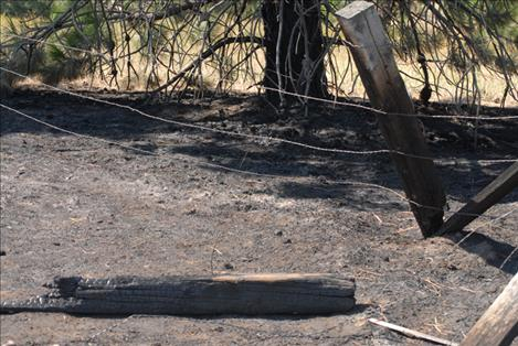 Charred wooden fenceposts remain after firefighters extinguished a lightning-caused fire.