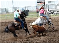 Ropin' Rooster