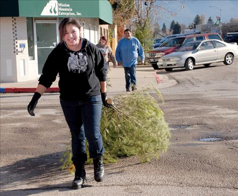 Denny Pourier drags a Christmas tree to its new home on Ronan's Main Street. Sunshine and warm weather made it fun community service for all the Kicking Horse Job Corp students.