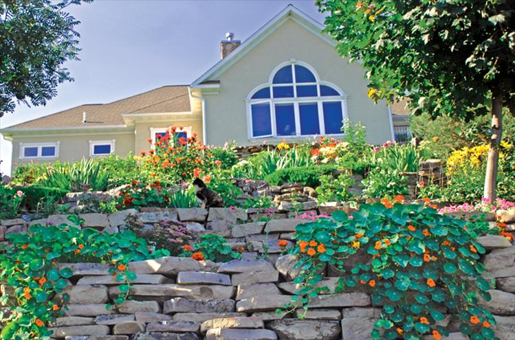 "Best blooming residence winners are Jim and Joanne Simpson. ""We both have skin in this project,"" Jim said, since they hauled in at least 100 tons of rocks and designed the space. The Simpson's backyard has several levels, stairs, dahlias, flowers, vegetables, trees and shrubs, including blueberries, black hollyhocks and two photogenic cats. Jim said there are three reasons for their landscaping: to grow flowers for Joanne to paint, to raise vegetables to eat and as part of his exercise program."