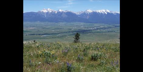 John Weaver's 159 conservation acres is visible from the National Bison Range