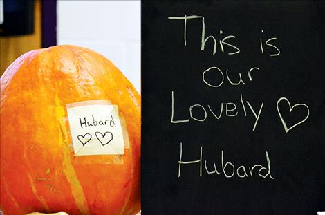 Hubard was supposed to be a cucumber.