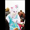Easter bunny visits town
