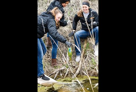 Madison Clairmont, LaNissa Mahkuk, and Regan Clairmont clean up the ditch near school.