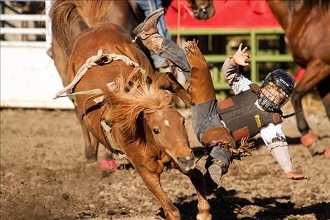 A mini  bucker  cowboy  catches  some air  during the Mission  Valley  NRA  Rodeo.