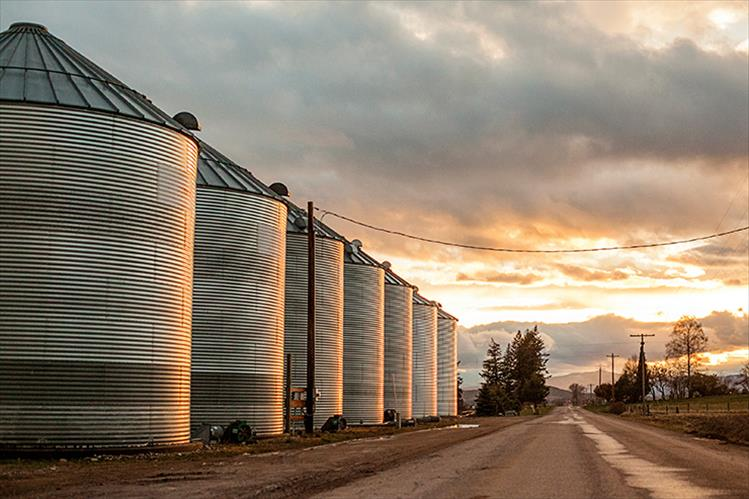 A family of silos on Minesinger during sunset
