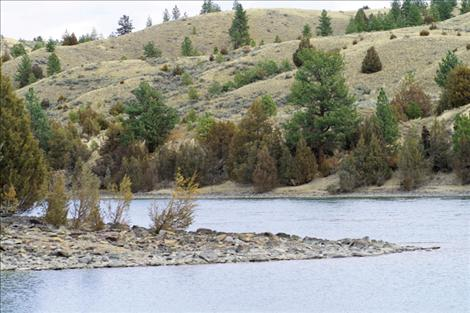 Certain  sections  of the Flathead River, like this bank near Fishing Hole, might benefit from the addition of shade trees as the years get hotter.