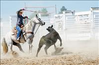 Locals compete in ranch rodeo days