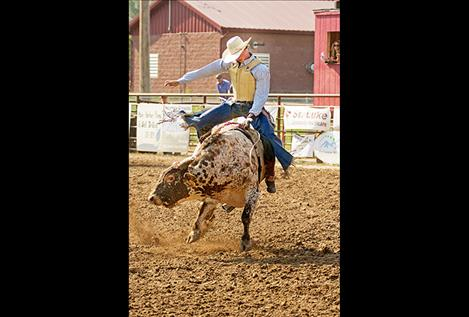 Payton  Fitzpatrick takes his turn on the back of a bull at this year's Ronan Pioneer Days Rodeo.
