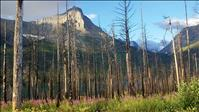 Glacier National Park prepares for winter season