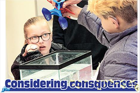 Students learn how easy it is to transfer aquatic invasive species from one body of water to another by pretending a fish tank is the lake.