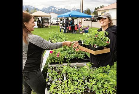 Sheila Rigby buys a tray of tomato plants and flowers from Cryse Heiner.