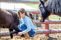 Horse rescue becomes one woman's mission