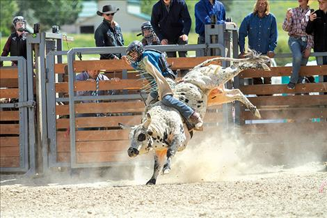 "Logan Adler rides mini bull ""Tylenol"" at the Hot Springs Rodeo."
