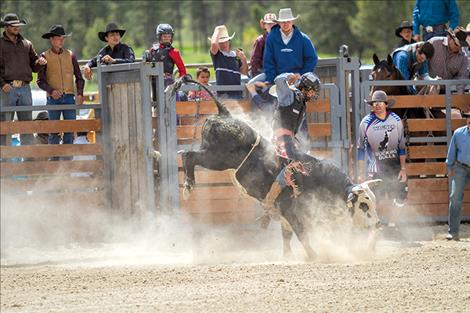 "Lavonntae Morigeau struggles to hold on to his mini bull ""Soap on a Rope"" at the Hot Springs Rodeo."