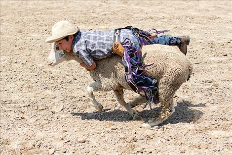 Youngsters held on tight to their sheep during Saturday's sheep riding event.