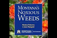 Publication on noxious weed ID available