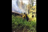 Mountain fire swiftly knocked out