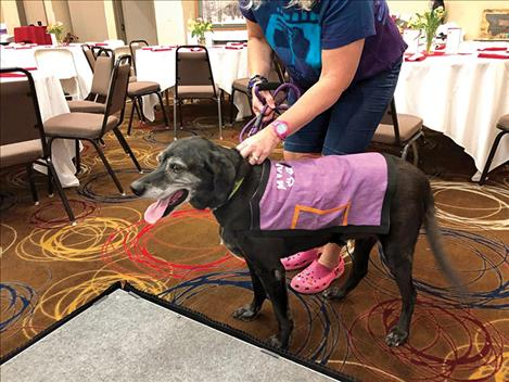 A dog wearing a special shawl with pockets for donations visits with event attendees.