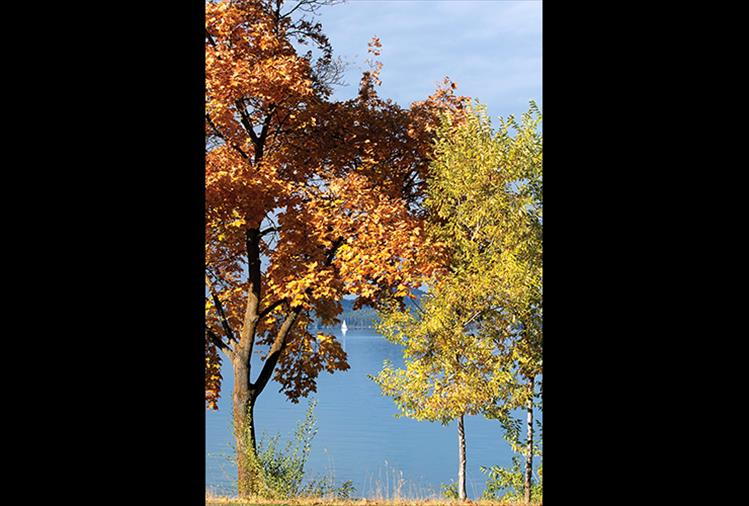 A sailboat on Polson Bay is framed by the fall foliage of trees along Hwy. 93.