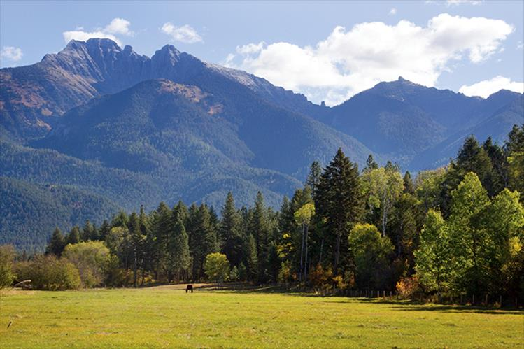 With the Mission Mountains as backdrop, fall landscapes in the Mission Valley provide majestic scenery.