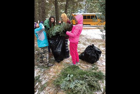 Students gather greens to create beautiful fundraising wreaths.