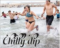 Polar Plunge swimmers shiver into New Year
