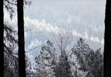 Its Not Your Imagination Special >> Valley Journal It S Not Your Imagination The Snowpack Is Low