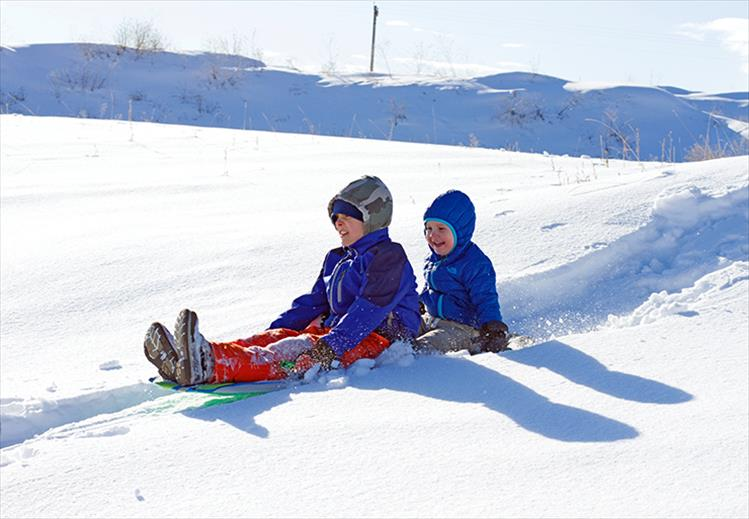 Snow accumulation and sunshine pair-up to create a fun afternoon of sledding for brothers Finn and Rowan Goddard.