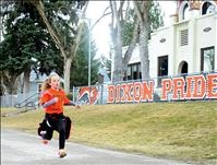 Bison stampede supports play equipment for Dixon schools