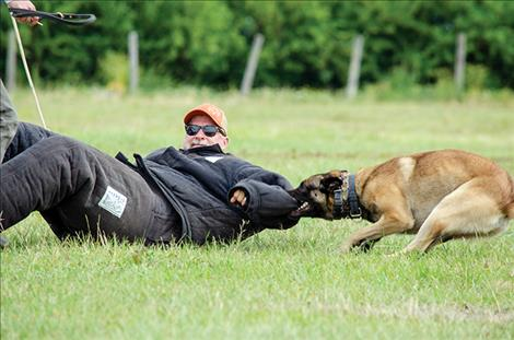 Master trainer Kevin Klostermeier wears a padded suit while being attacked by a K-9 officer during a certification course