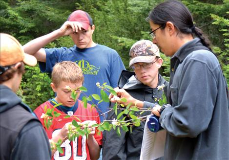 Loga Fixico, Salish Kootenai College environmental science student, describes characteristics of a serviceberry plant to FFA students in North Crow Canyon May 22.